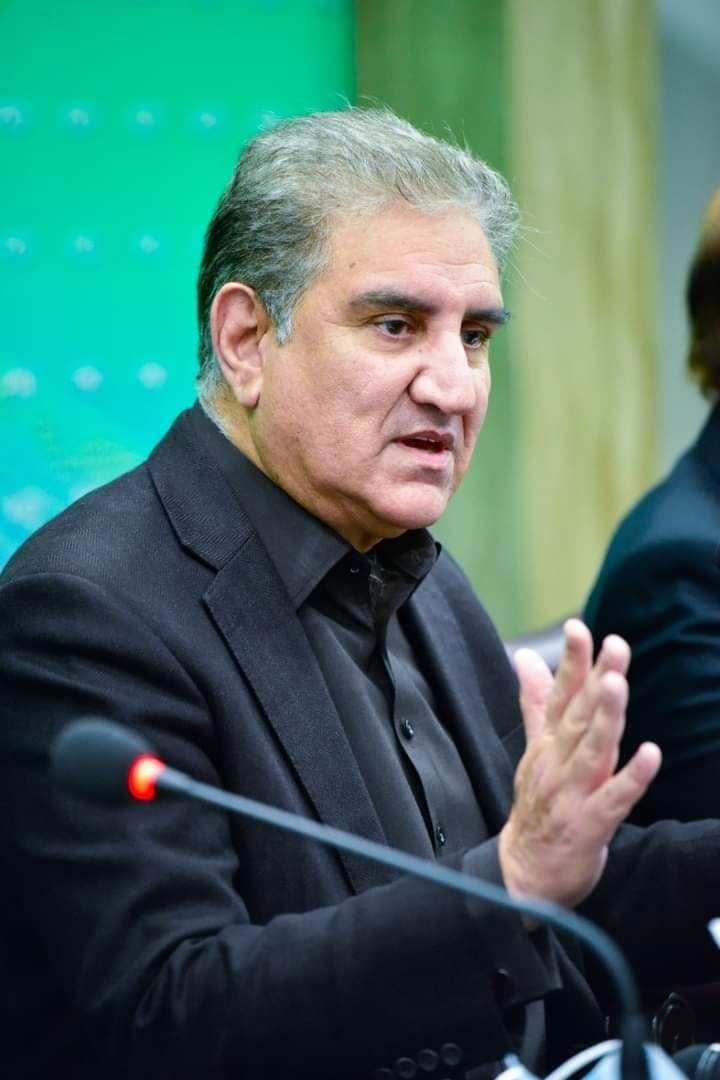 Shah Mahmood Qureshi stated that nothing will show up on January 31